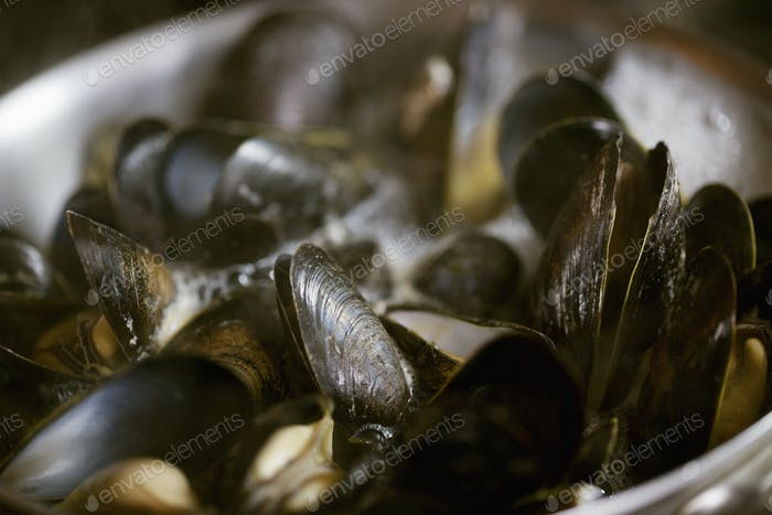 Close up of steamed Black Mussels.