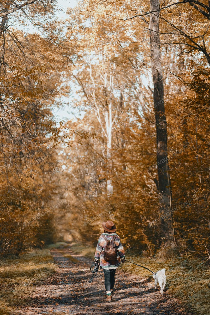 Stylish woman with backpack hiking with white dog in sunny autumn woods. Cute swiss shepherd puppy