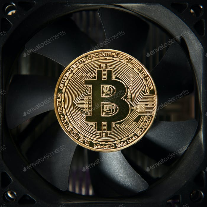 Bitcoin gold coin on coller