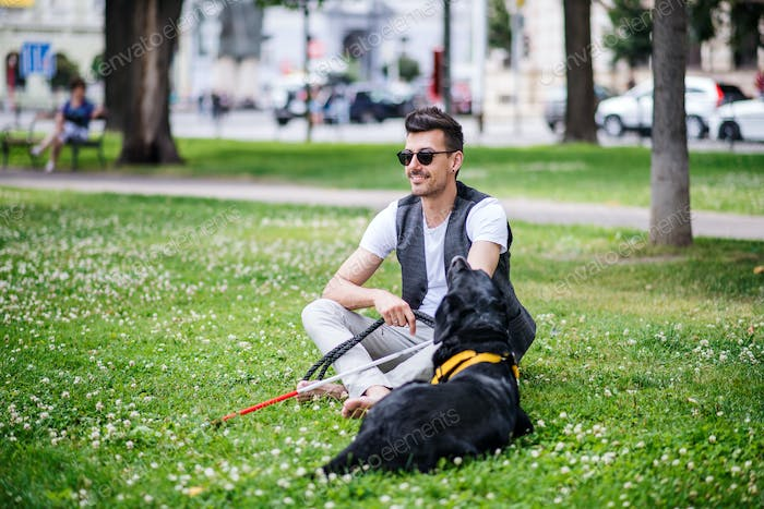 Young blind man with white cane and guide dog sitting in park in city