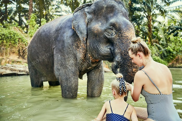 Mother and daughter washing an elephant at an animal sancturay