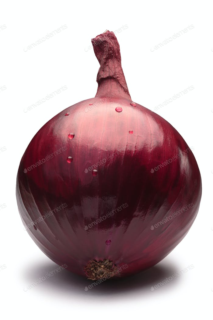 Whole red onion bulb, paths
