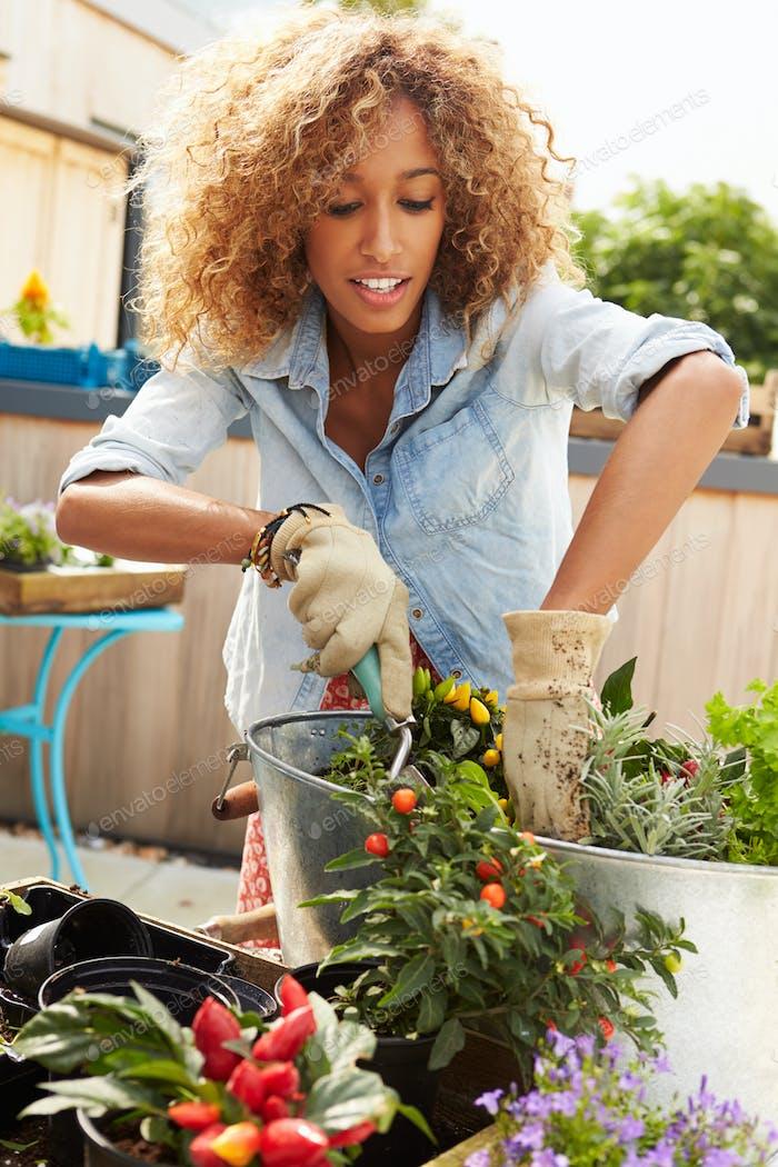 Frau Pflanzbehälter auf dem Dach Garten