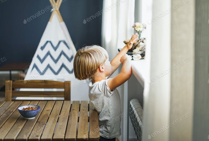 Cute blonde boy in white t-shirt with cat at bright room at the home