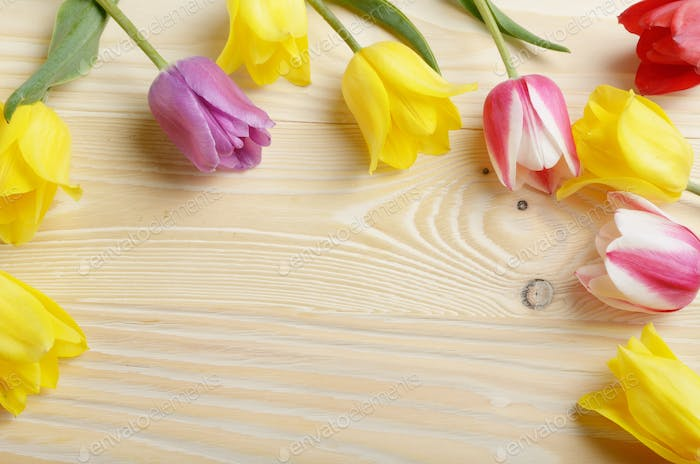 Frame of colorful tulips on natural wooden background with space