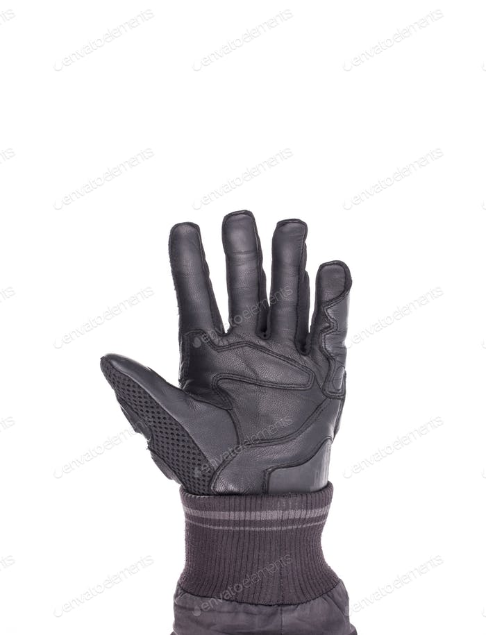 Biker Glove isolated on white
