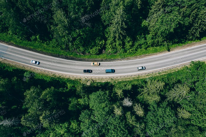 Aerial drone view of green forest with curved road.