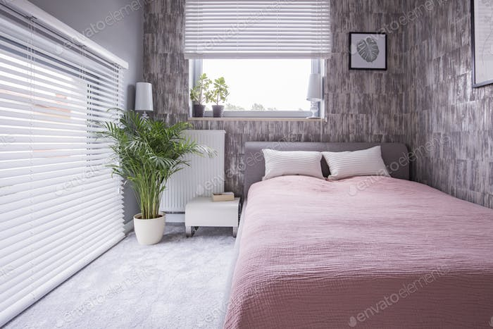 Plant next to bed with pink sheets and pillows in bright bedroom
