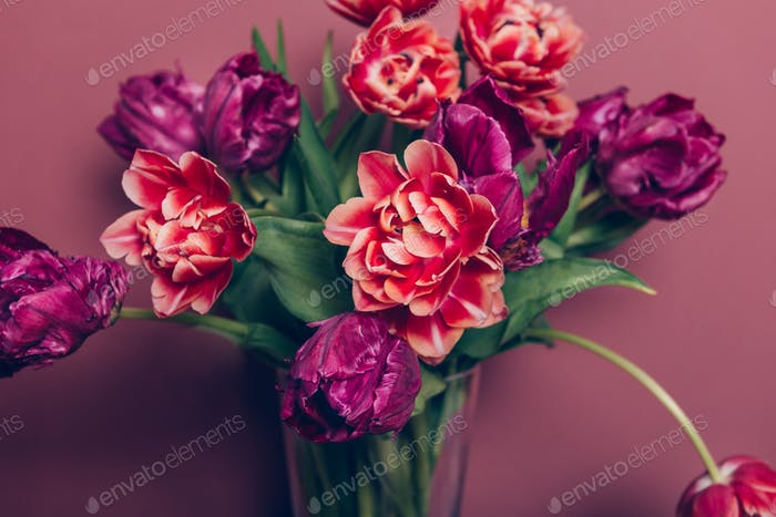 Bunch of Peony Style Tulips