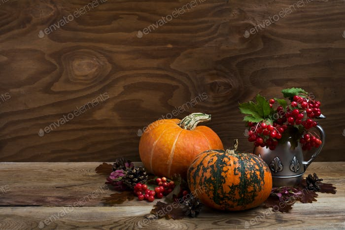 Fall rustic decor with red berry in silver kettle, copy space