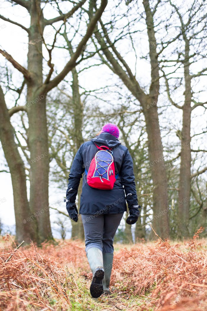 Hiker Walking on a Forested Path in England