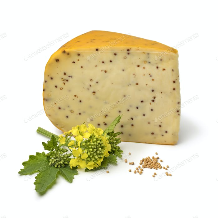 Dutch young mustard cheese