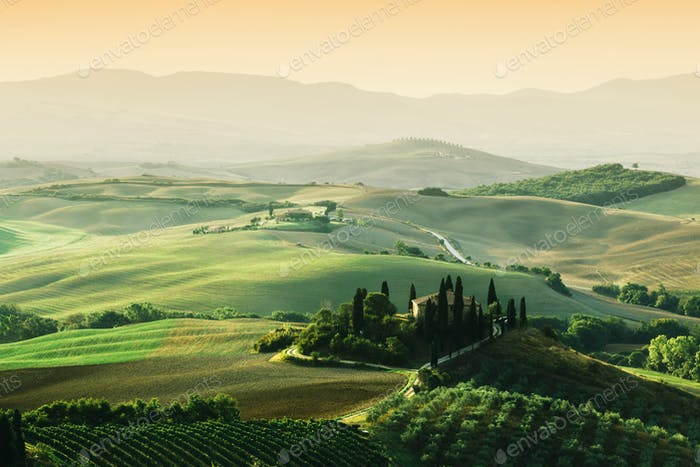 Tuscany landscape at sunrise. Tuscan farm house, vineyard, hills.