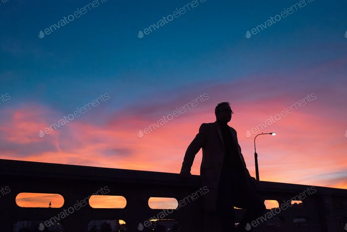 A silhouette of businessman standing on a bridge at dusk.
