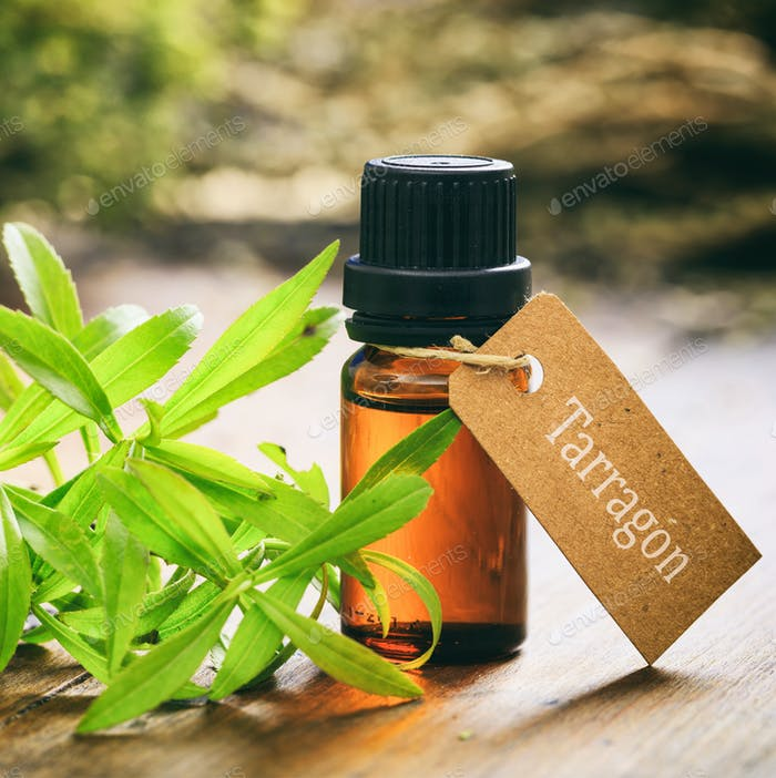 Fresh tarragon plant leaves and essential oil on wooden background.