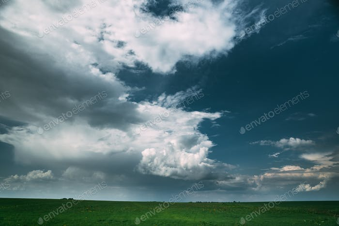 Countryside Rural Field Meadow Landscape In Summer Rainy Day. Sc