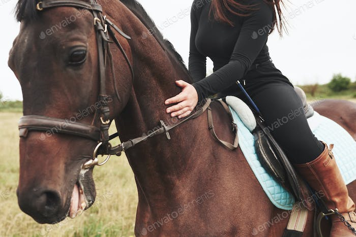 Closeup picture of young beautiful woman rides a horse