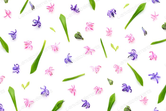 Floral pattern made of hyacinths flowers, green leaves, bud on w