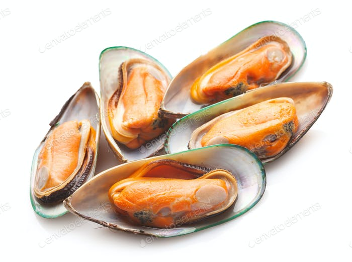 Green mussels