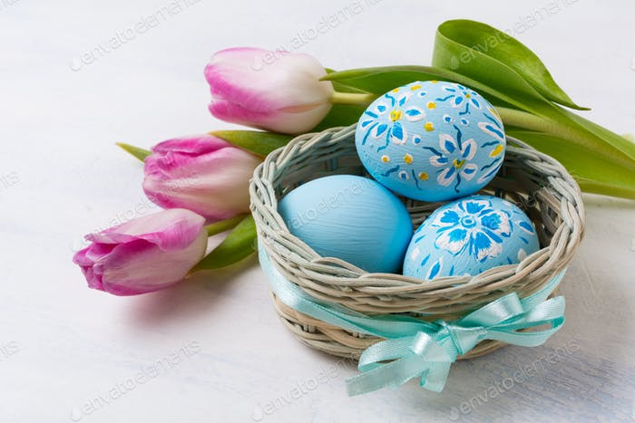 Easter blue painted eggs in thebasket and pink tulips
