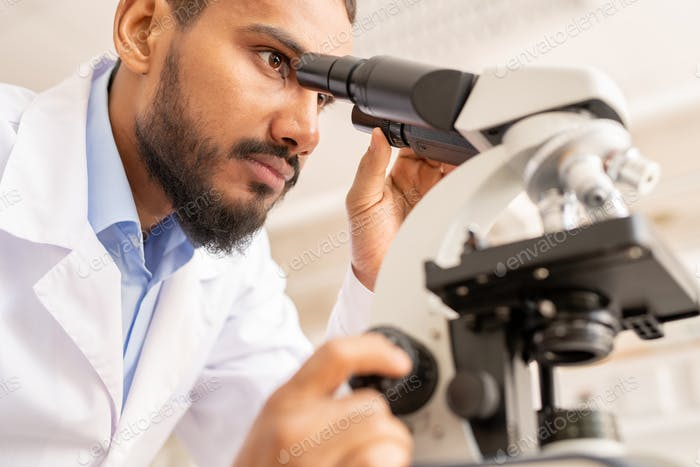 Busy medical scientist working in laboratory