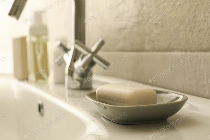 Soap dish with soap in bathroom sink
