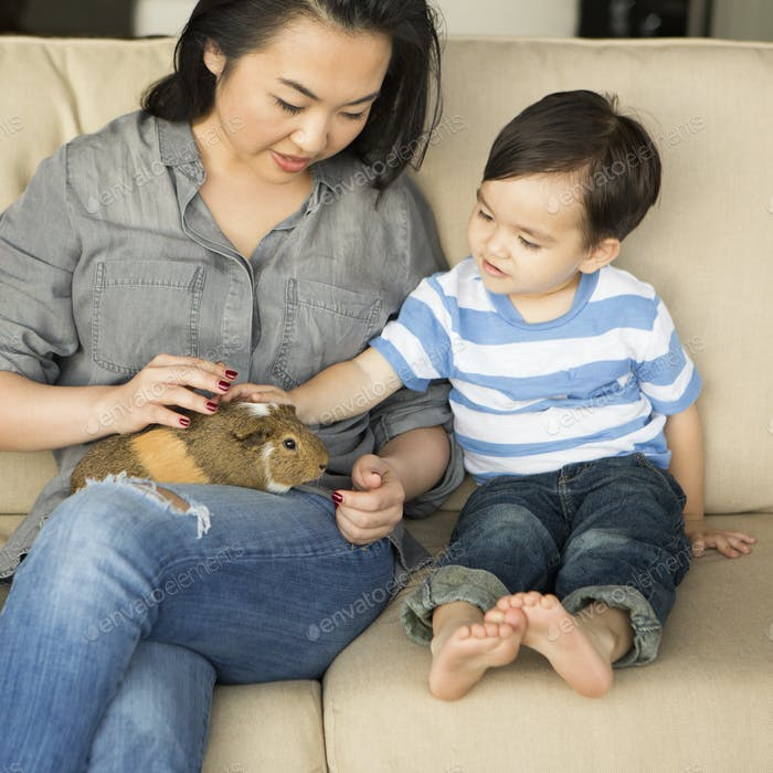 Smiling woman sitting on a sofa, a guinea pig sitting on her lap, her young son stroking the animal.