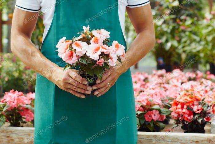 porträt von mann arbeiten als florist in blumenladen halten eimer