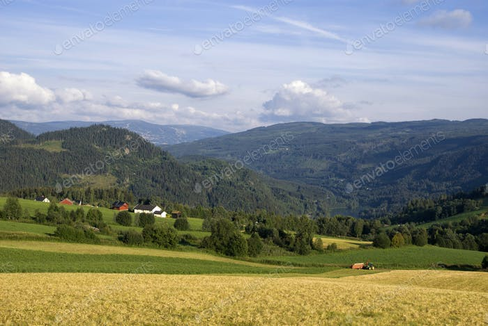 Farmland on a mountain slope in the norwegian valley Gudbrandsdalen