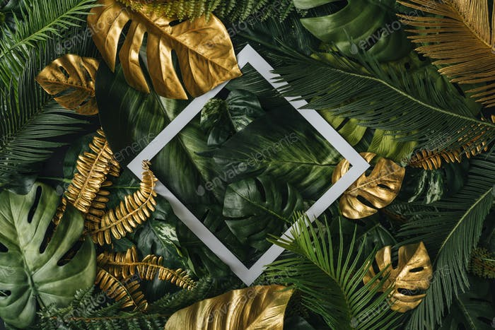 Creative nature background. Gold and green tropical palm leaves. Minimal summer abstract junlgle