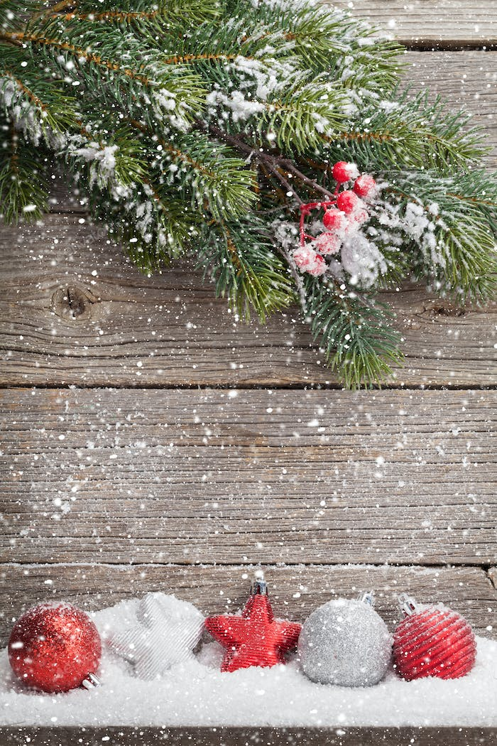 Christmas backdrop with fir tree branch