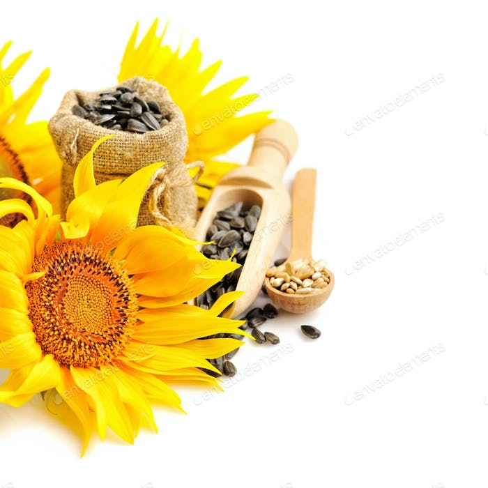 Yellow sunflowers with wooden spoon and a small bag of seeds on