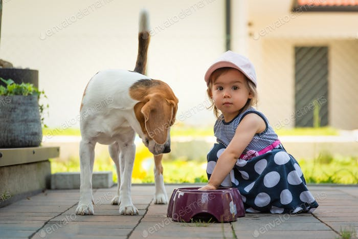 Cute baby girl together with beagle dog in garden in summer day.
