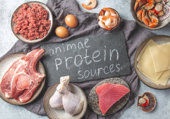 Fondo de fuentes de proteínas animales