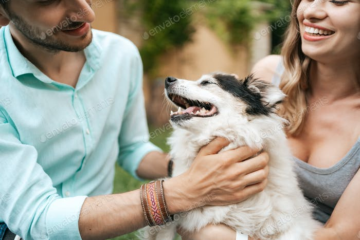 Schönes Paar mit einem Hund auf dem Gras