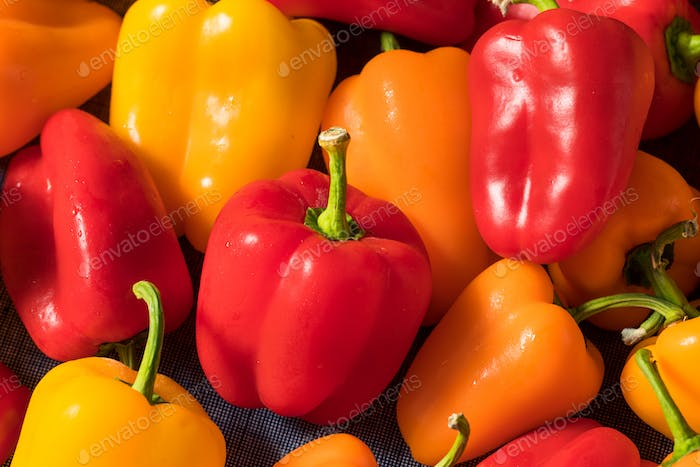 Raw Colorful Mini Bell Peppers