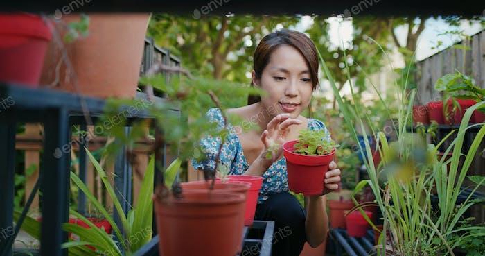 Woman shop at flower shop