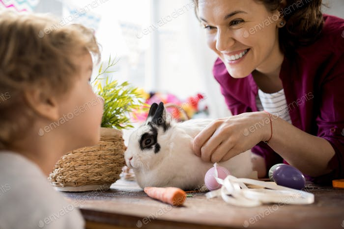 Cute Family Playing with Bunny on Easter
