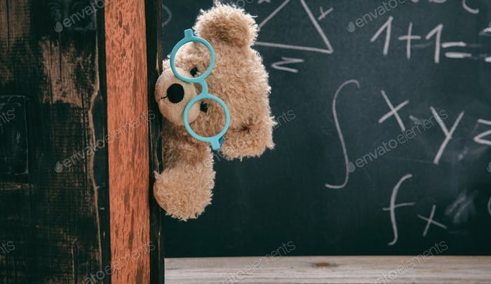 Cute teddy wearing glasses and black chalkboard with mathematics