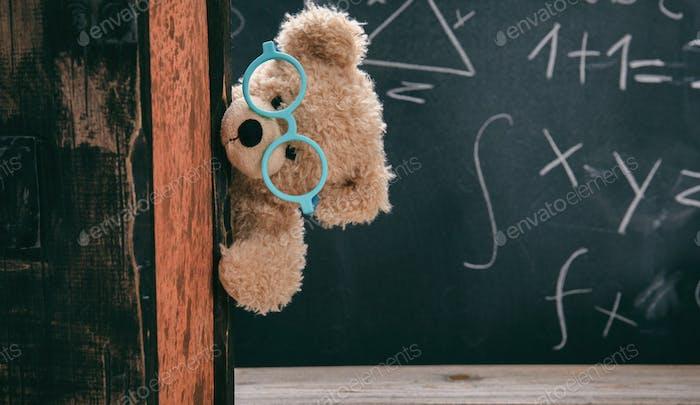 Netter Teddy trägt Brille und schwarze Tafel mit Mathematik