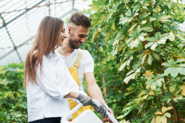 Young couple watering the plants in greenhouse and smiling
