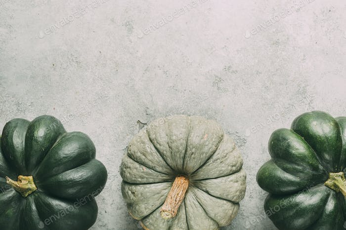 Thumbnail for Big green ripe pumpkins on grey background