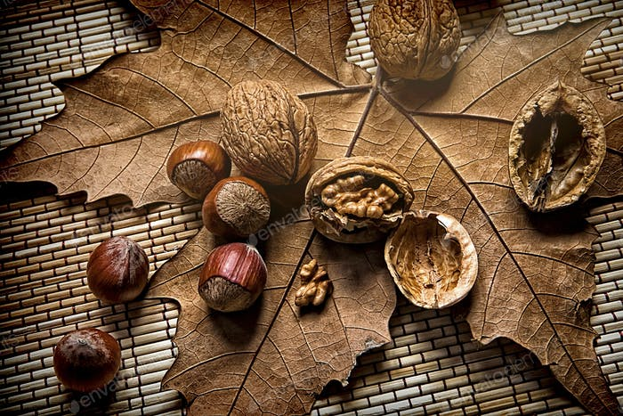 Walnuts and hazelnuts on a dry leaf