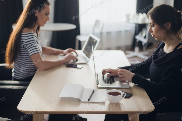 Startup business concept with two young girls in modern bright office interior working on laptops