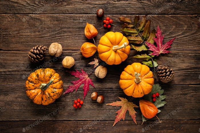 Autumn pumpkins with fall leaves, berries on wood background. Thanksgiving day or halloween holiday