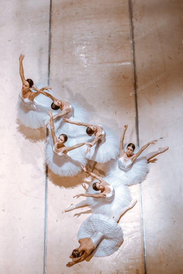 The seven ballerinas on floor