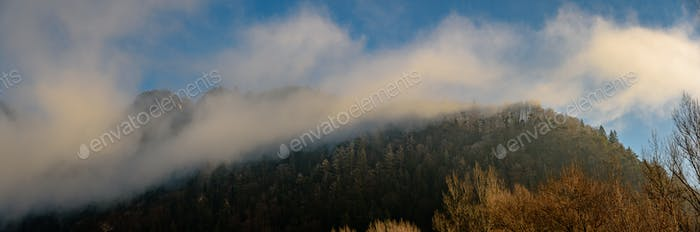 Beautiful morning autumn, winter hills with forest and haze panorama