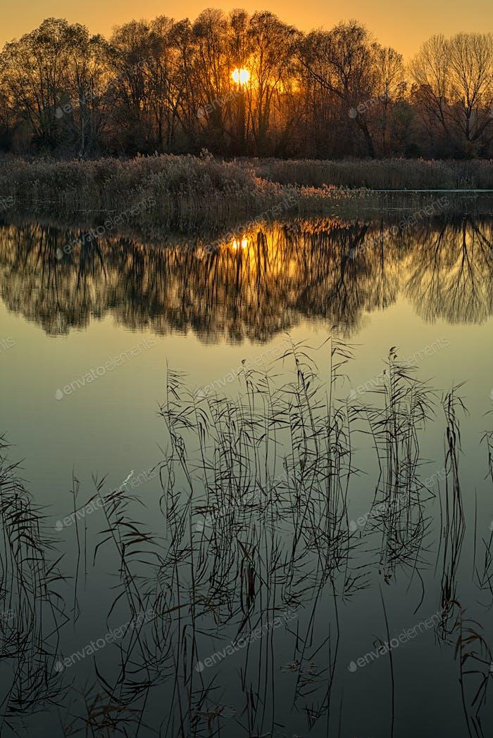 Sunset on peatlands