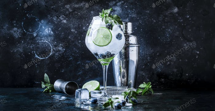 Summer cocktail blueberry mojito
