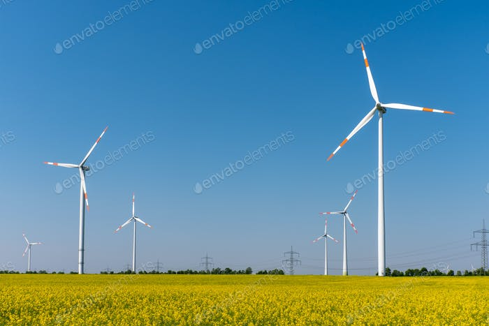 Modern wind turbines and flowering oilseed rape